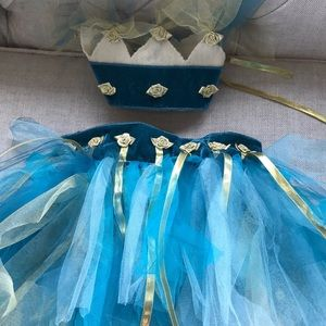 Turquoise Gold Fairy Tutu and Crown